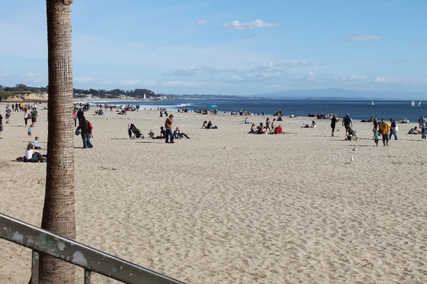 at the santa cruz beach boardwalk, in the warm california sun