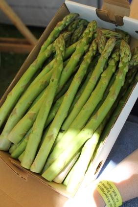 asparagus fest 055