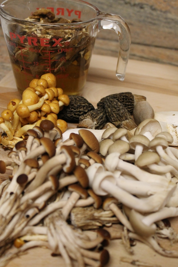 morel, trumpet royale, alba clamshell, brown clamshell, forest nameko, velvet pioppini, and dried porcini