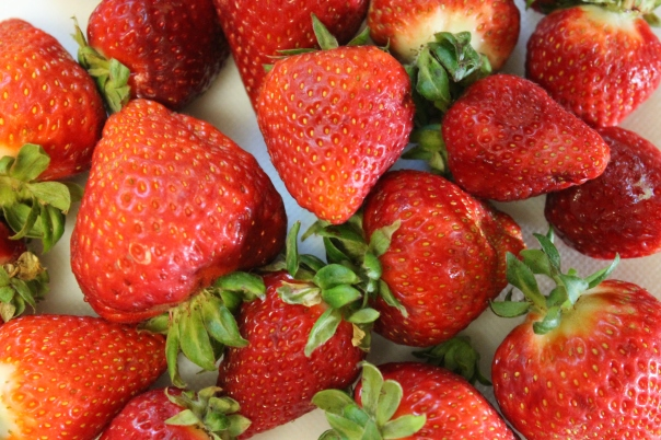 fresh, local strawberries