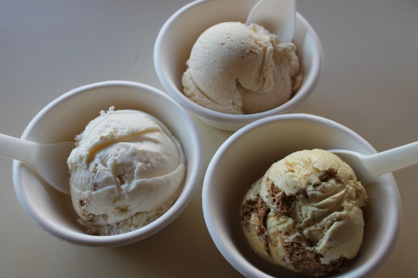 humphry slocombe 016